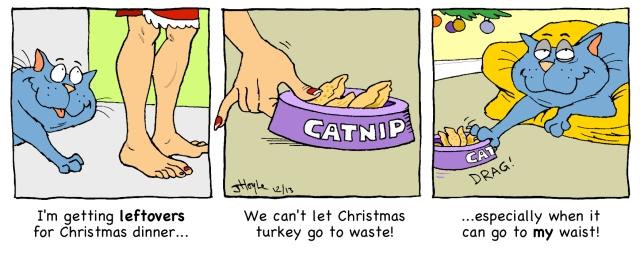 Catnip's Christmas dinner